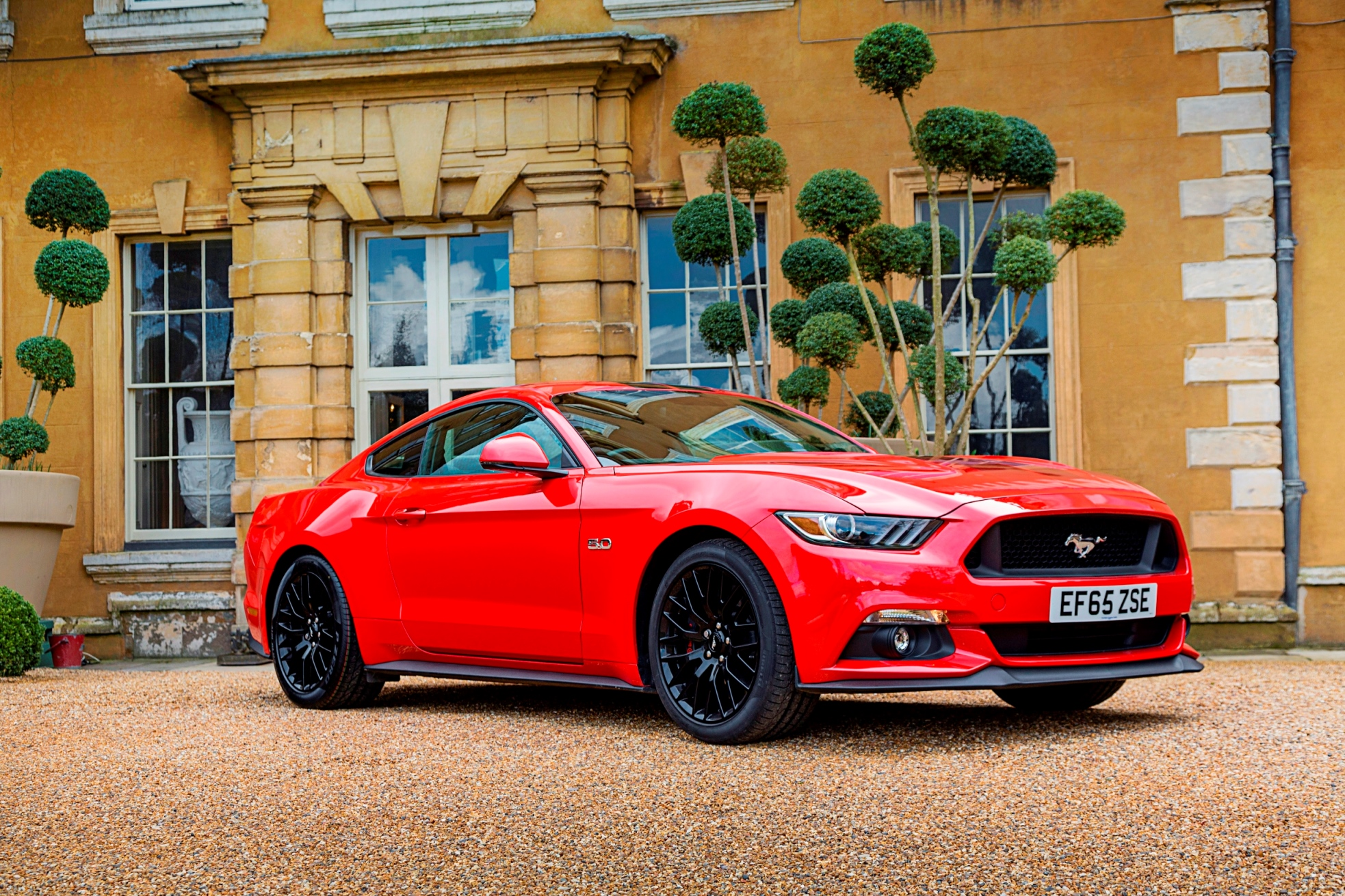 How to choose the right: Ford Mustang