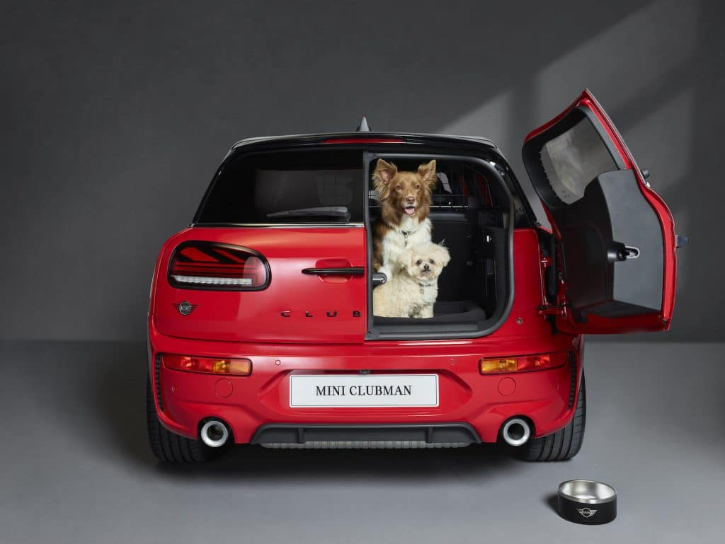 Mini partners with Dogs Trust to become first 'dog-friendly car retailers'